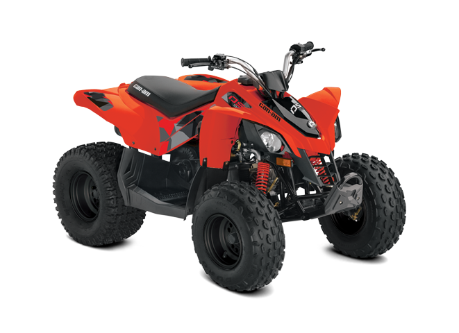 Can-Am DS 90 2020