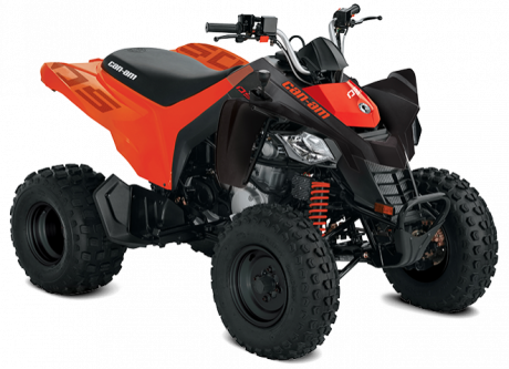 Can-Am DS 250 2020